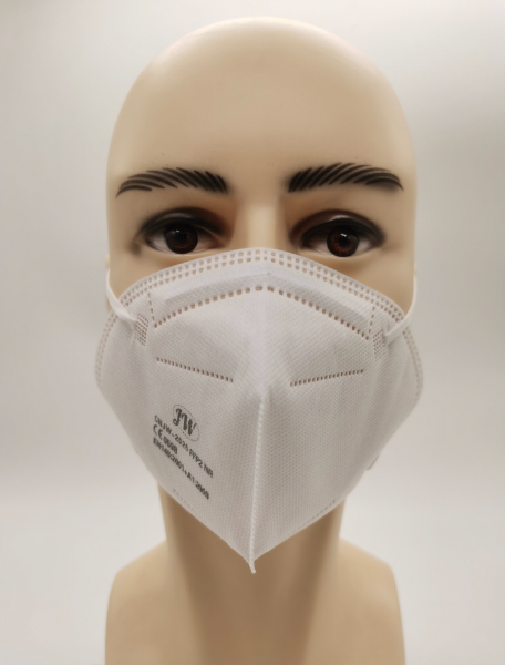 10 x FFP2 Masken